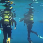 Mergulho em Porto Santo